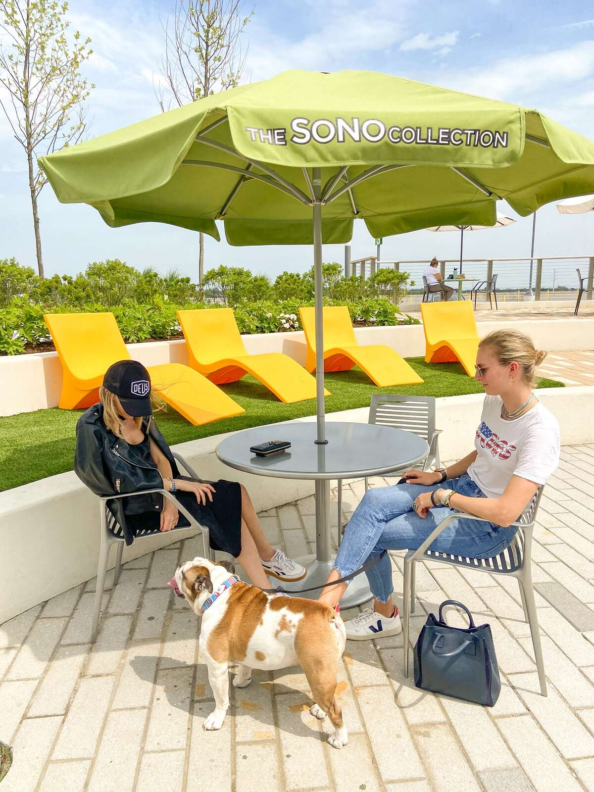 The SoNo Collection hosts The Pup Brunch from May to August.