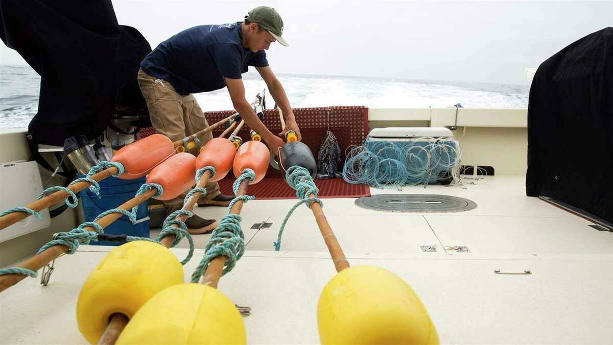 Research technician Michael Wang deploys deep-set buoy gear off the California coast.