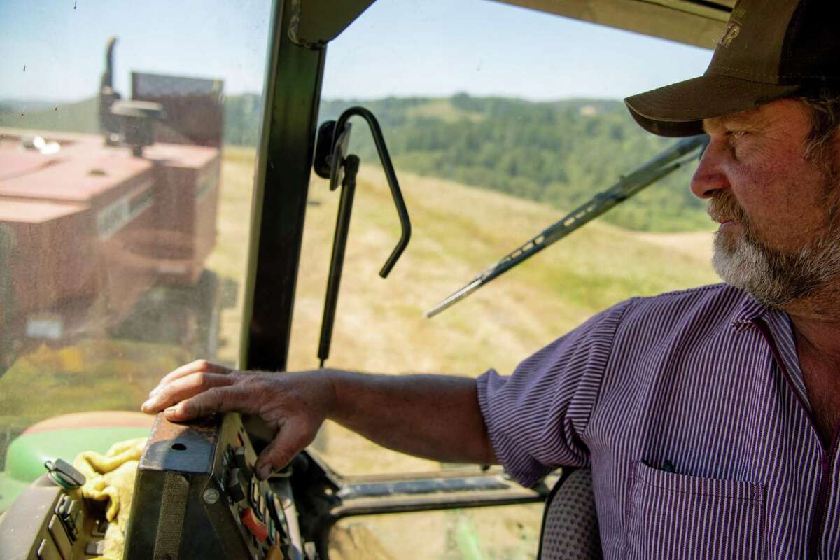 Dairy farmer Steve Perucchi looks back at the hay baler towed behind his tractor as he collects hay from fields cultivated with regenerative farming techniques at Bodega Pastures.