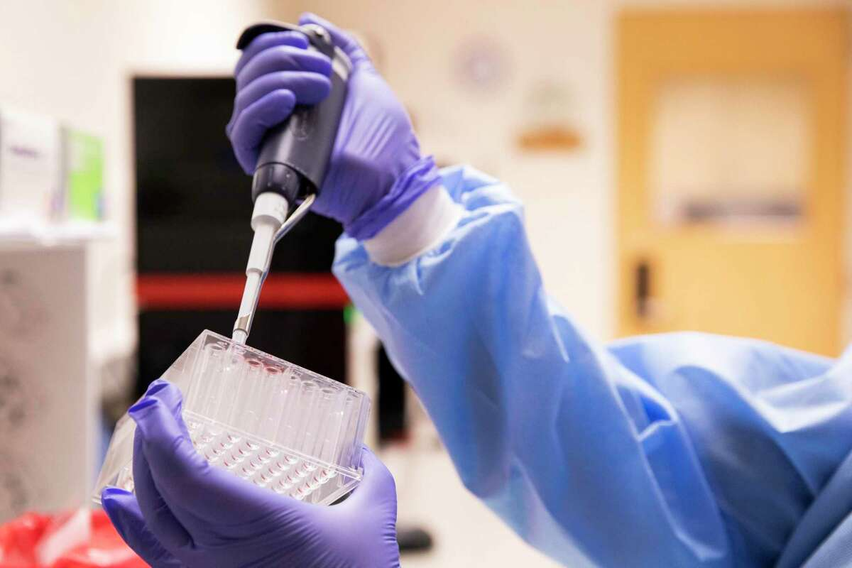 Senior Microbiologist Marzieh Shafii demonstrates the process of diluting samples of COVID-19 in preparation for genomic sequencing while in the Contra Costa County Public Health Lab at the Contra Costa Regional Medical Center in Martinez, Calif. Thursday, May 27, 2021.