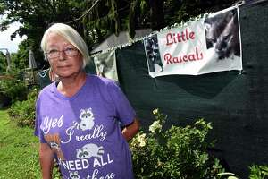 Eunice Demond of Little Rascals Rescue and Rehabilitation stands in the area on her property in Guilford on July 1, 2021, where she is seeking a special use permit for her operation.