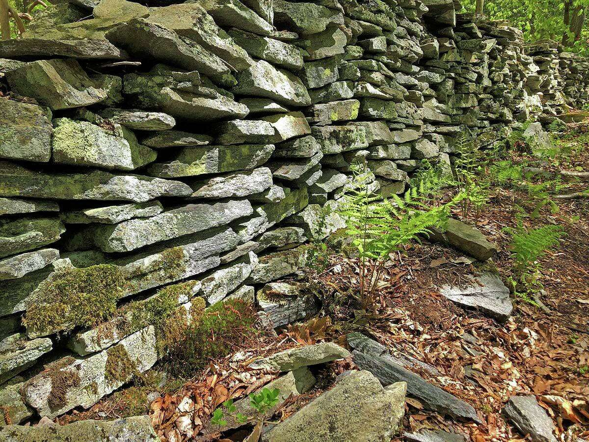 A stone wall along the path at the Brockway-Hawthorne Preserve.