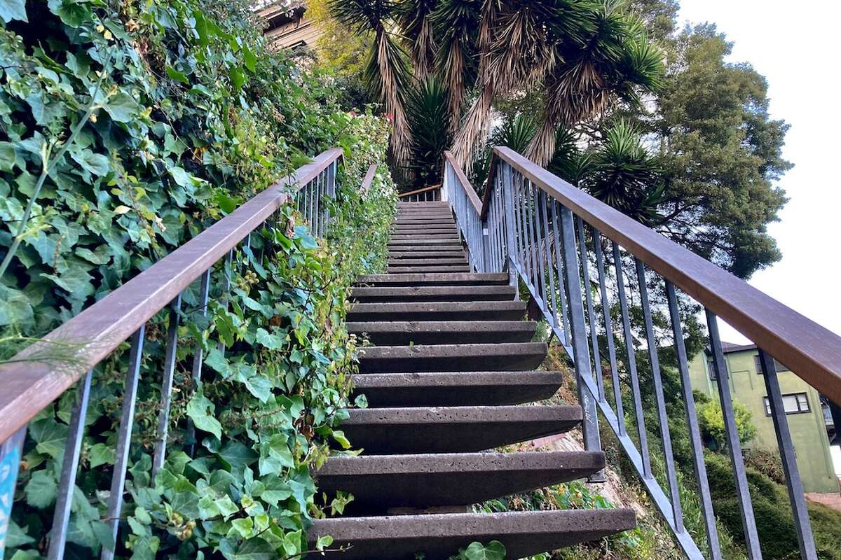 Views from the Filbert Steps.