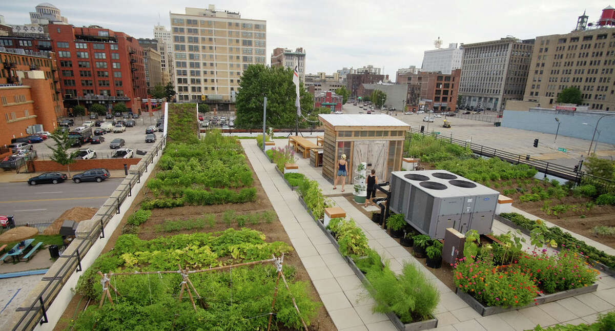 The FOOD ROOF Farm, a project of Urban Harvest STL.