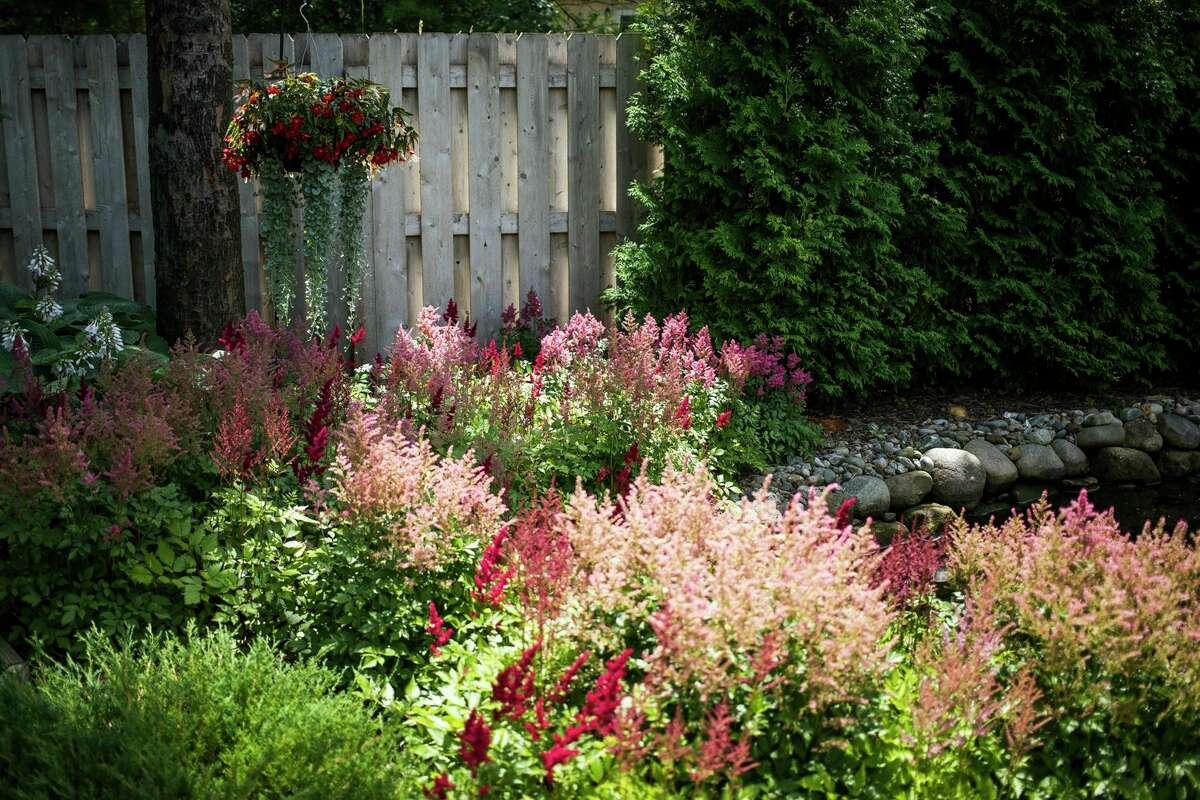 The garden of Judy Gunderson and Bill Heeschen is a feast for the senses with a babbling brook, fragrant and colorful flowers and eye-catching sculptures. This is the first year the couple's garden has been featured on the Reece Endeavor's annual GardenWalk. (Katy Kildee/kkildee@mdn.net)