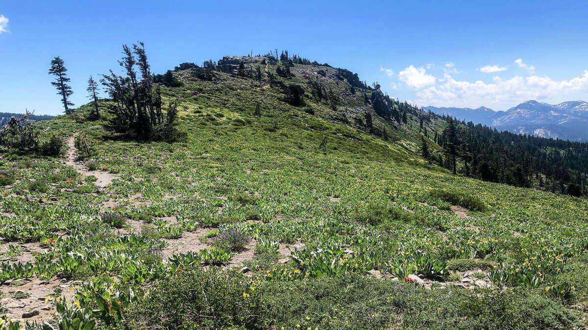 The trail to Ellis Peak on Tahoe's West Shore.