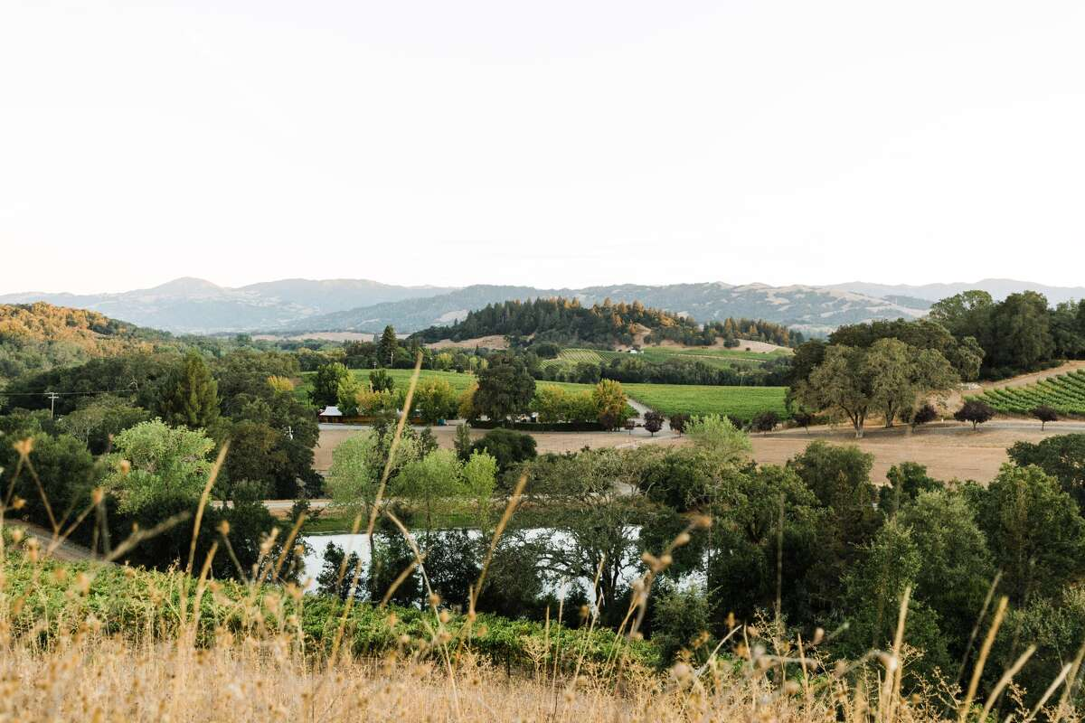 Warnecke Ranch and Vineyard is in Healdsburg. Mount St. Helena is pictured in the background.