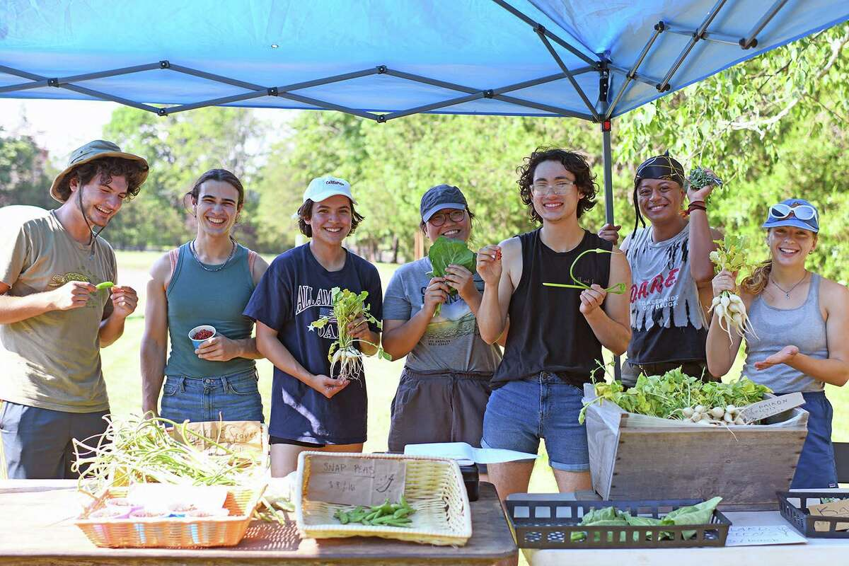 Every Wednesday from 3 to 7 p.m., the Long Lane farming students sell their crops at a farm stand near the corner of Long Lane and Wadsworth Street, and other locations.