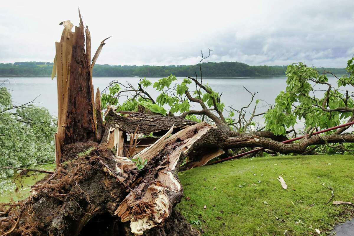 A large tree was toppled at a home along the Hudson River seen here on Thursday, July 8, 2021, in Coxsackie, N.Y. A powerful storm tore through a section of the village toppling about 100 trees, and damaging some homes and businesses according to the village mayor. (Paul Buckowski/Times Union)