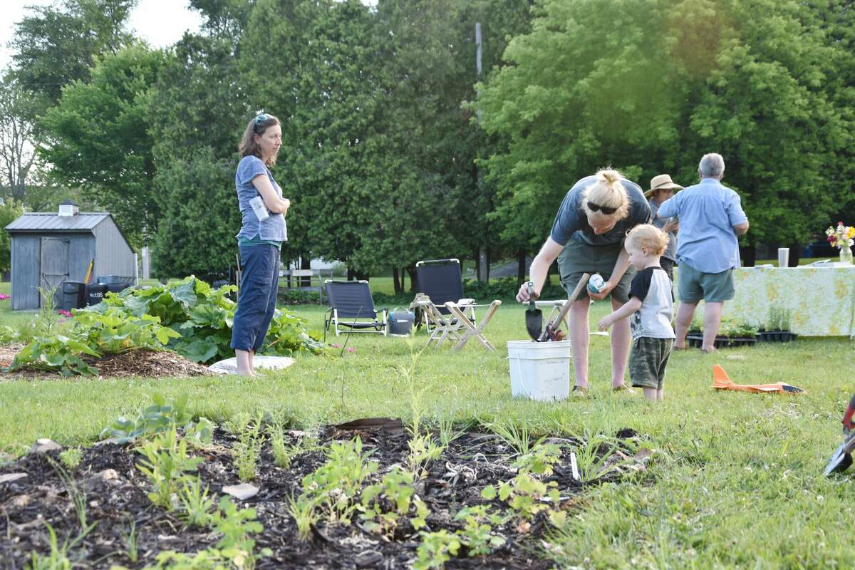 The new pollinator garden at Sophia Street Community Garden was busy with volunteers on June 30 as people showed up to plant and mulch and mingle with other gardeners.