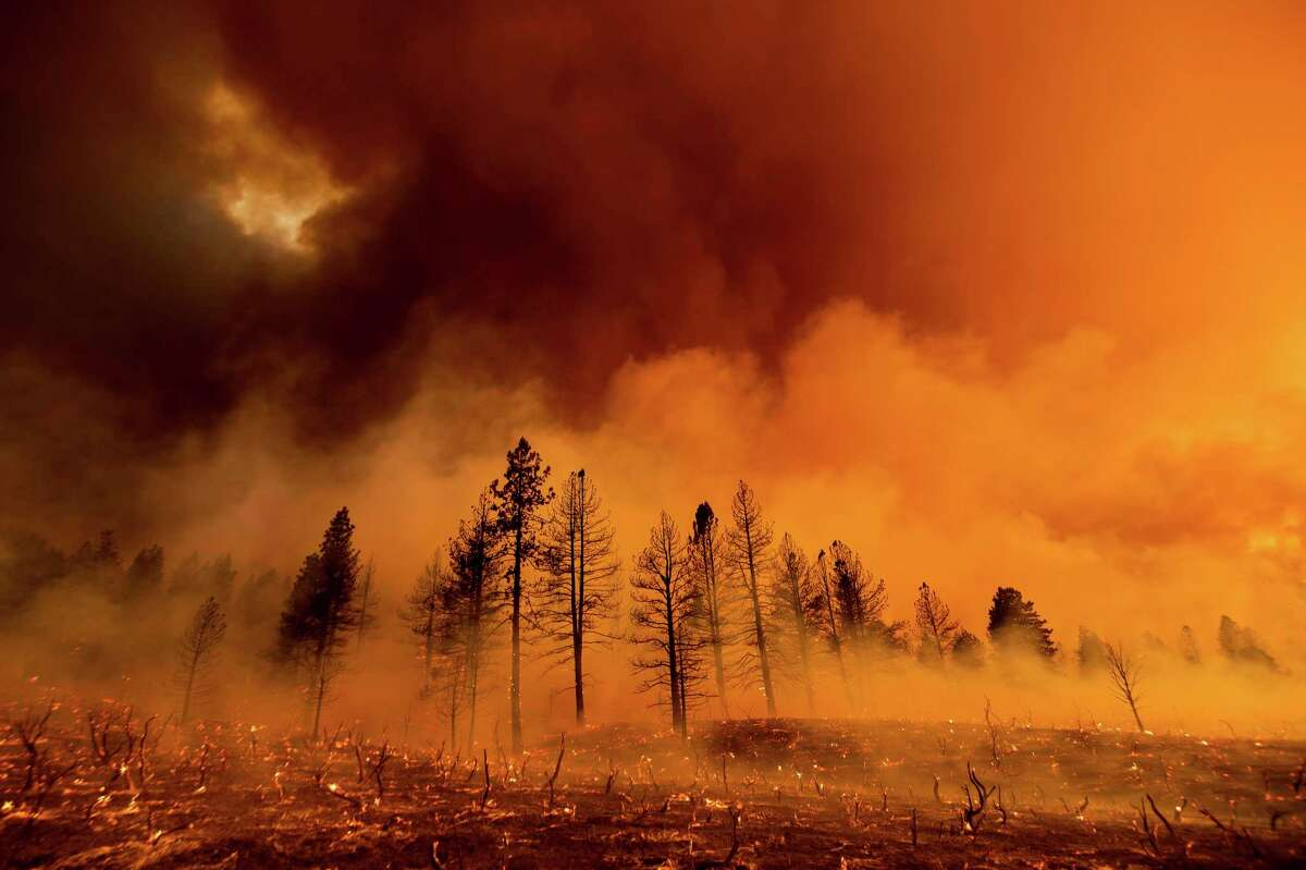 Smoke envelops trees as the Sugar Fire, part of the Beckwourth Complex Fire, burns in Doyle, Calif., on Friday, July 9, 2021. The wildfire had consumed more than 55,000 acres and remained 8% contained on Saturday, July 10, 2021.