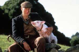 """Nicolas Cage plays a reclusive truffle hunter in this week's new release, """"Pig,"""" but will he utter less than the approximately 16 lines Oscar nominee James Cromwell, above, had in """"Babe""""?"""