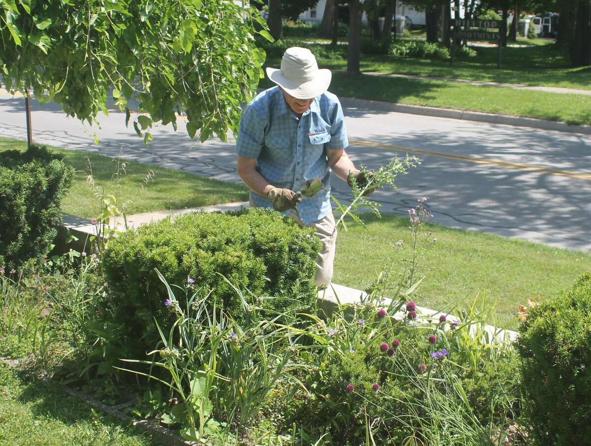 Steve Wagner pulls weeds during a visit to Dempsey Manor in Manistee on Monday.