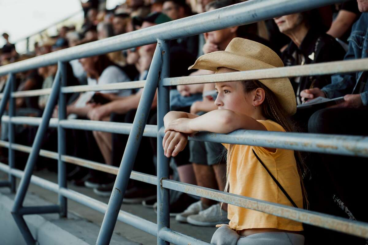 Watching the rodeo