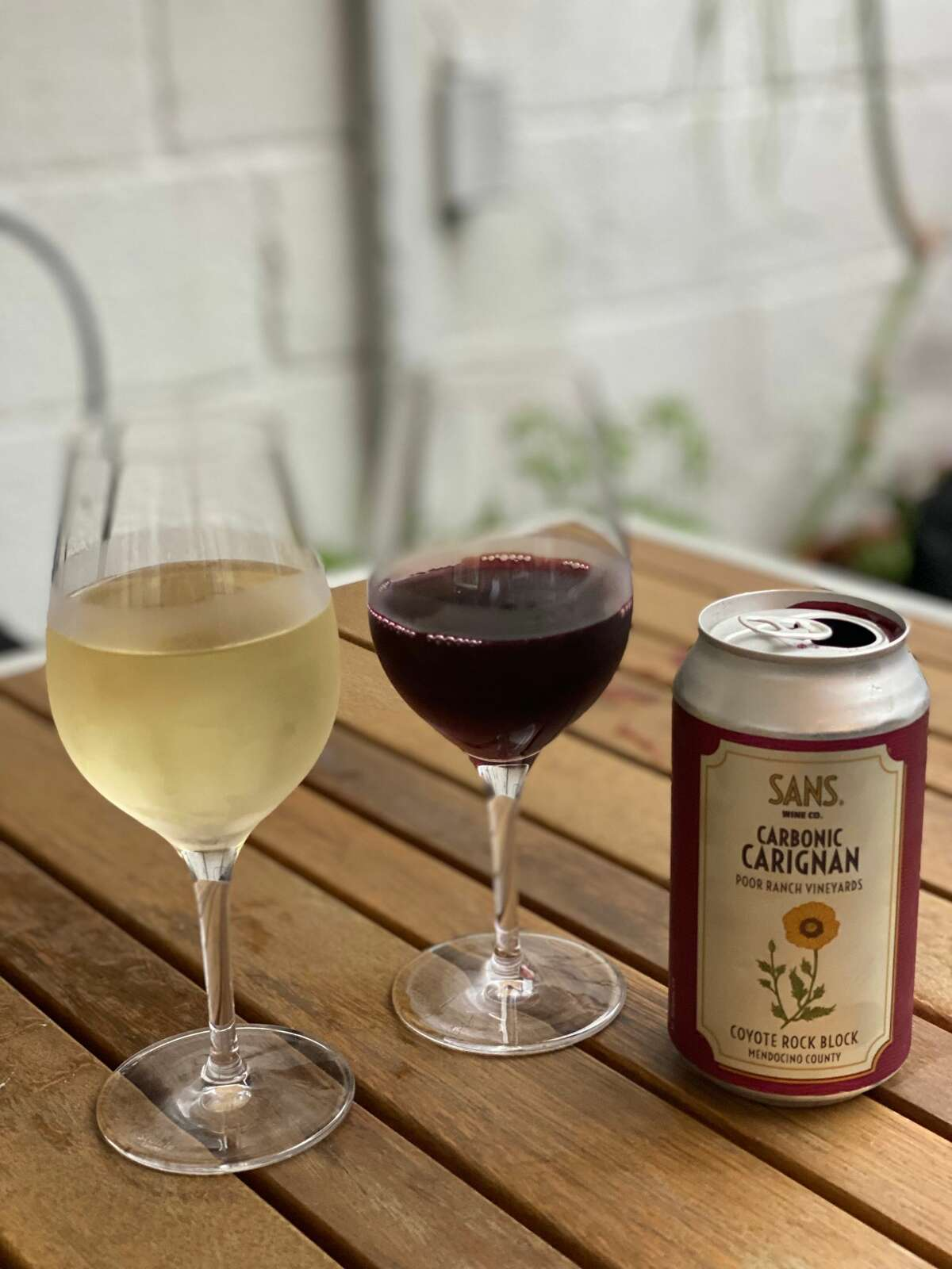 Carignan in a can at Post on Lark in Albany, served chilled, is full of plum jam and blackberry notes but still dry as a bone. (Susie Davidson Powell/for the Times Union.)