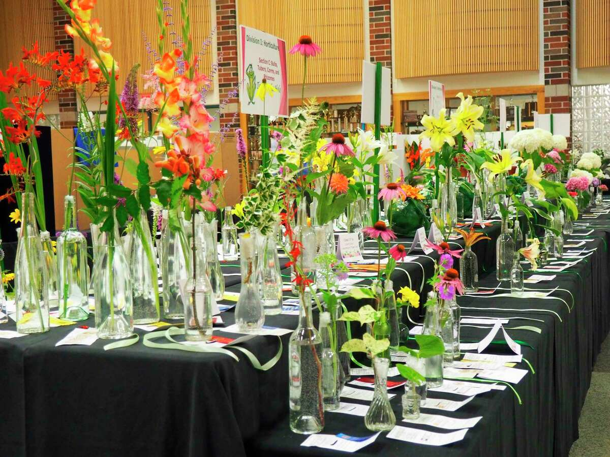 Pictured arenumerous individual floral specimens is fromthe Portage Lake Garden Club's2017 Flower Show called Toadily Marvelous.(Courtesy photo)