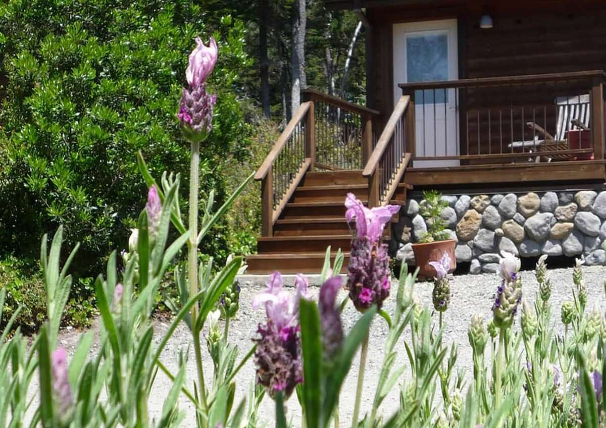 """The owners of this guest studio in Mendocino have been awarded """"most hospitable hosts"""" in California by Airbnb."""