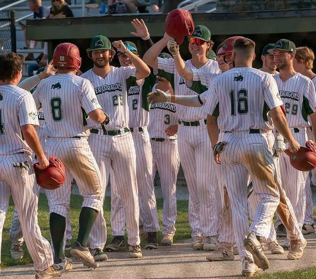 The Alton River Dragons celebrate as Brady Mutz returns to the dugout in a recent game. Mutz (8) had four hits, including a double, an RBI and scored twice in Alton's 12-0 win over the O'Fallon Hoots in the first game of a doubleheader Tuesday night at Lloyd Hopkins Field. O'Fallon won the second game 4-1.
