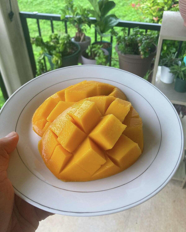 Fresh mango from Emily Mahoney's tree in early July.