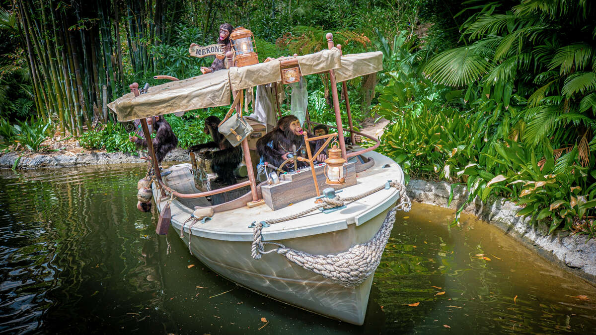 On the new ride, chimpanzees overtake a cruise boat full of explorers.