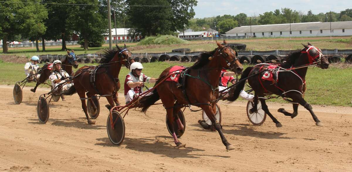 The 2021 Mecosta County Fair continued with its third day on Wednesday .