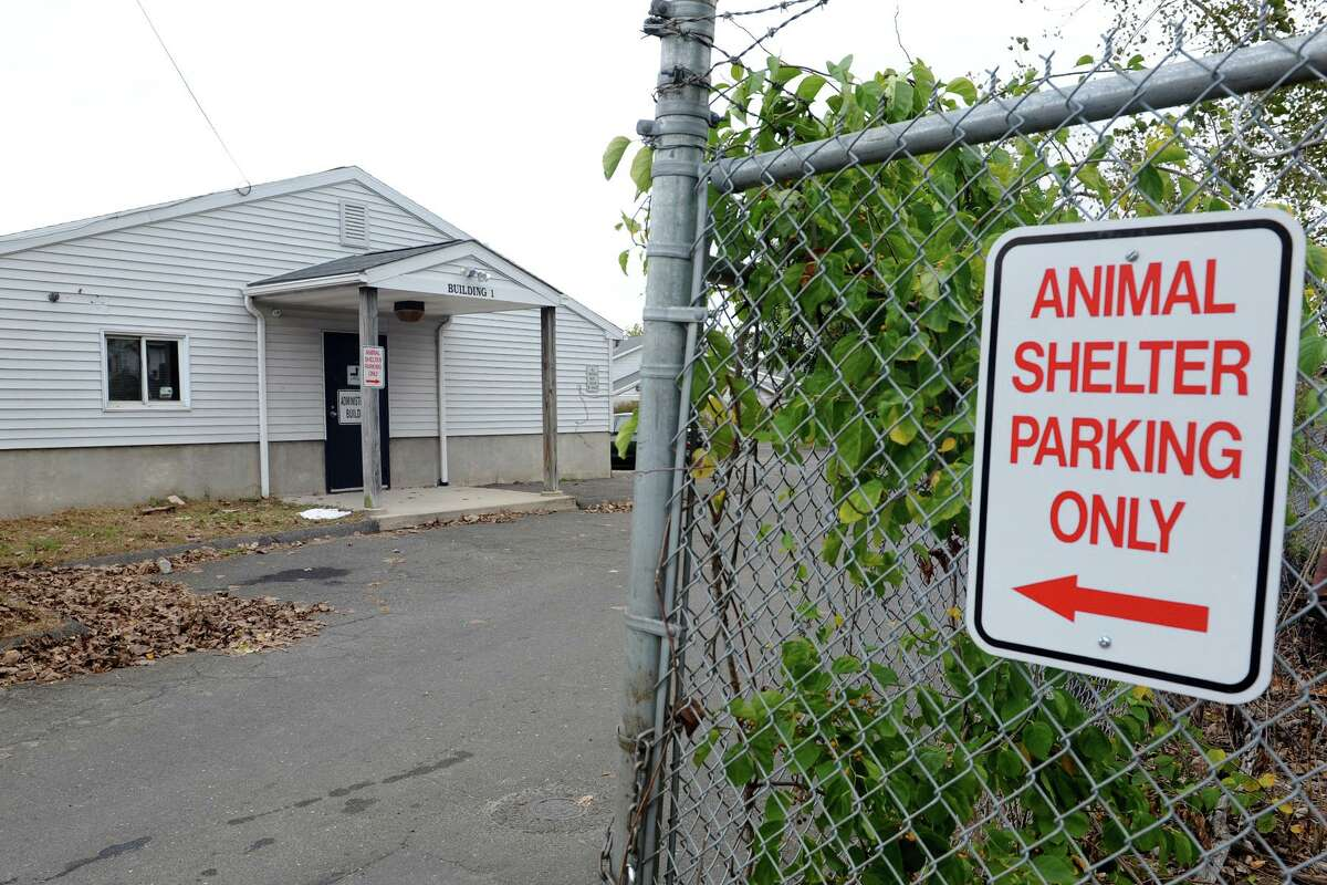 FILE PHOTO: Bridgeport Animal Control facility on Evergreen Street. The city has asked residents to call animal control if they see a bat at home, and report unusual animal behavior.