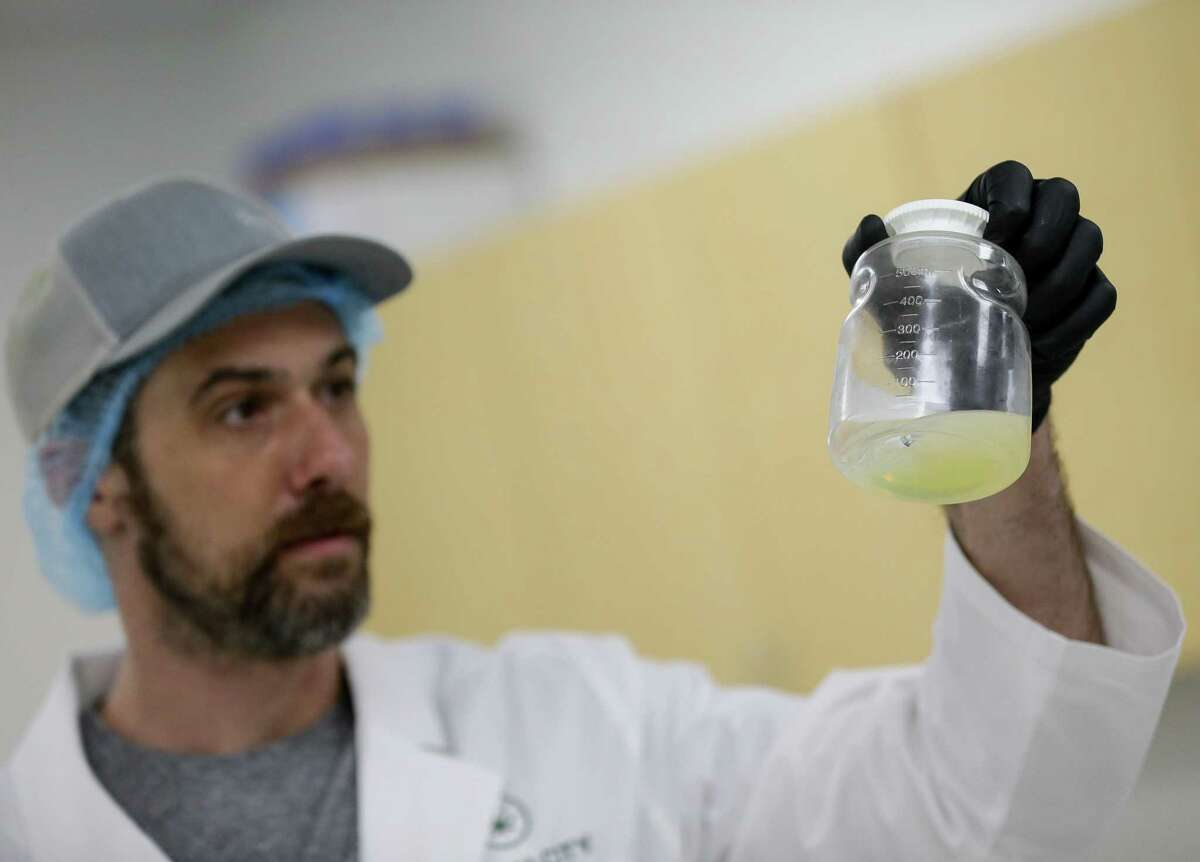 Bayou City Hemp general manager Stephen Trotter holds up nano-emulsified water soluble CBD - which is can be turned into their Mixer Elixir or used to make CBD-infused drinks - during a tour of their facilities on Thursday, June 24, 2021, in Houston.Bayou City Hemp is one of the largest hemp manufacturing outposts to launch since Texas legalized hemp in 2019. Founding executives left the oil and gas industry after the bill passed and got into the growing CBD industry.