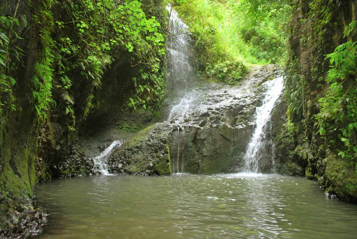 Maunawili Falls Trail is closing for two years.