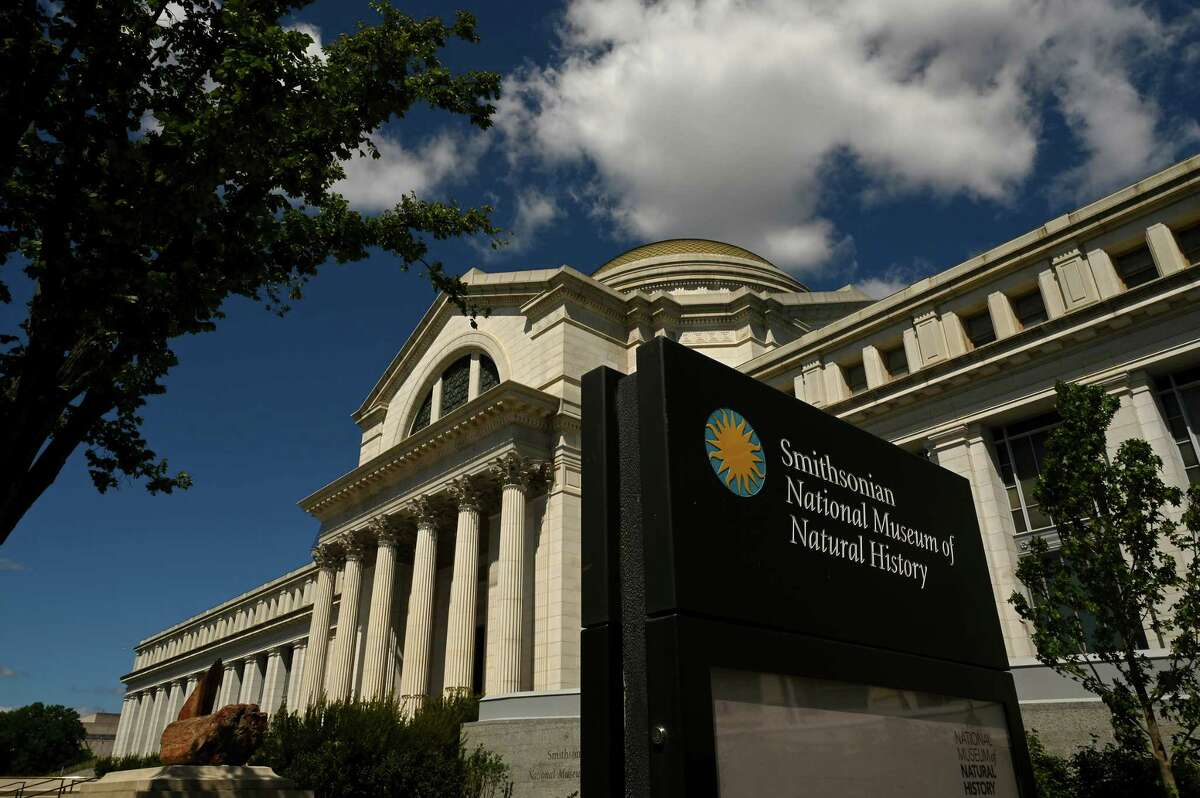 Effective July 20, the Smithsonian Institution will no longer require timed-entry passes or limit capacity at most of its facilities, including the National Museum of Natural History, seen in August 2020.