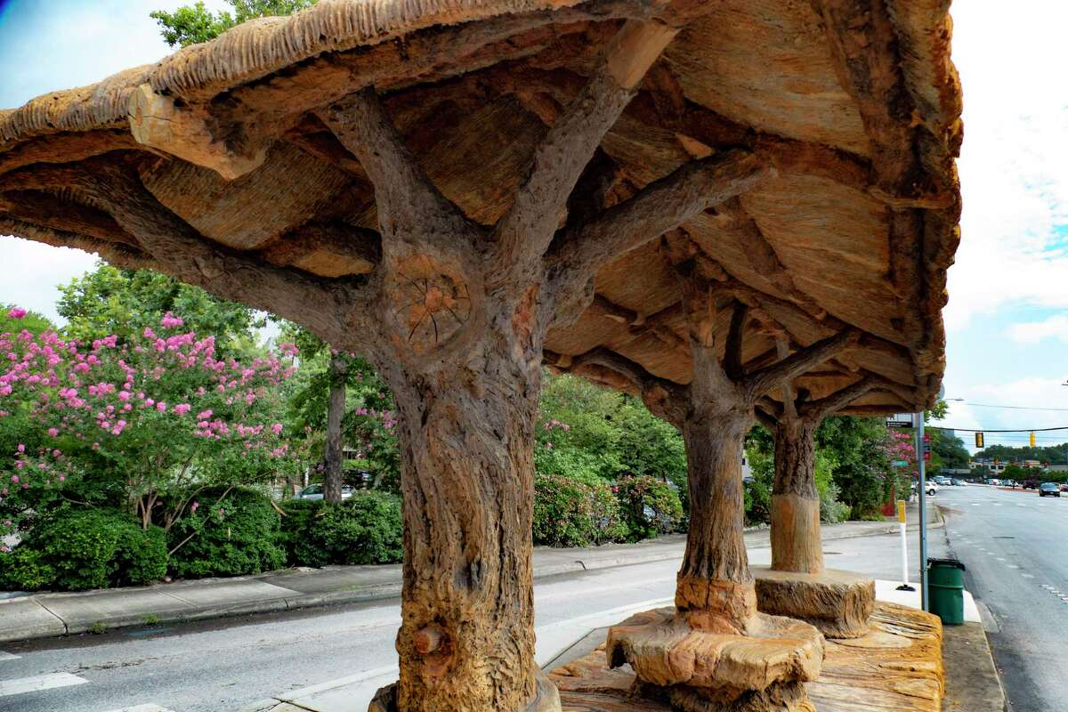 Despite its realistic appearance, the treelike bus stop in Alamo Heights by the late artist Dionicio Rodríguez actually is made of concrete.