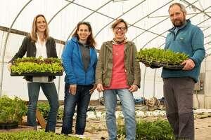 Kent Land Trust staff. From left, Connie Manes, Melissa Cherniske, Gwynne Seufert, Clark Gifford. .