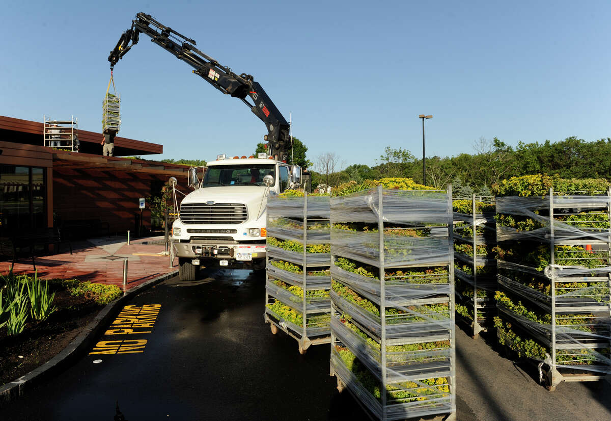 An Erie Materials boom places a container of sedum plants on the roof of Creo Restaurant at Stuyvesant Plaza in Albany, New York June 23, 2009.