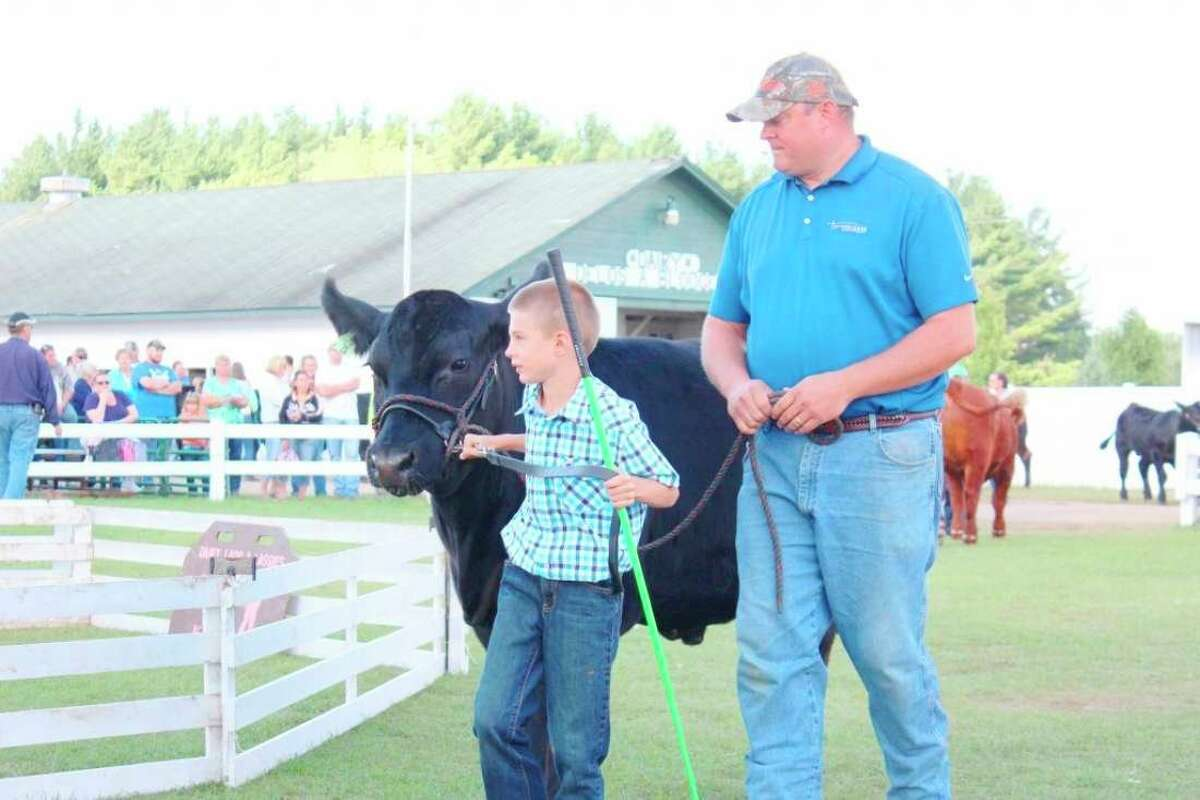 A 4-H member shows off his market steer during the large animal auction at the Osceola County 4-H/FFA Fair in 2013. This year's fair runs July 24-31. (Pioneer file photo)