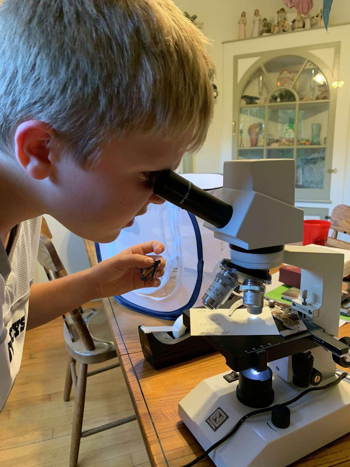 Owen Miller looking through a microscopt