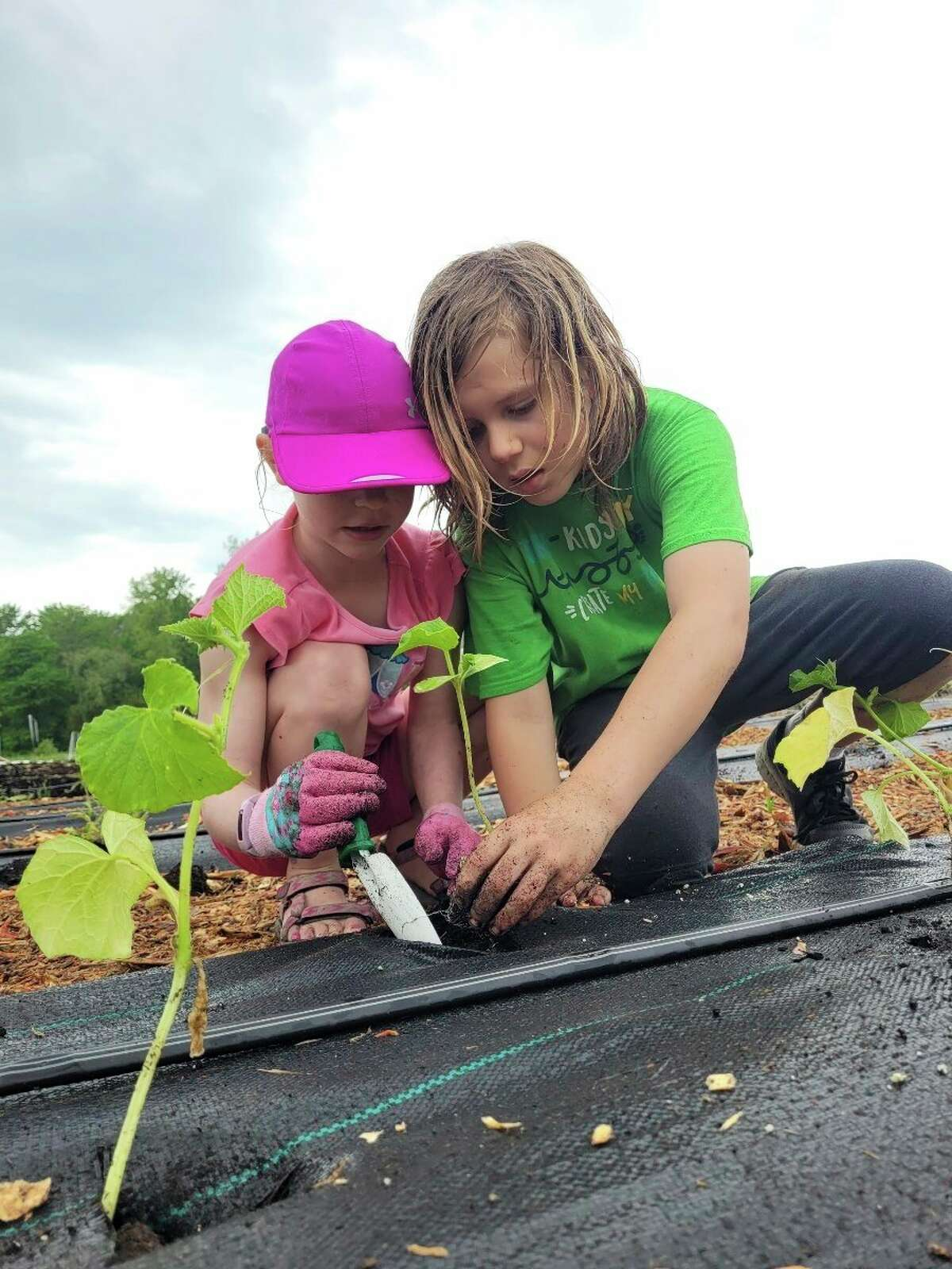 Phoenix Community Farm received a $10,000 grant from the Charles J. Strosacker Foundation for infrastructure and equipment expansion. (Photo provided)