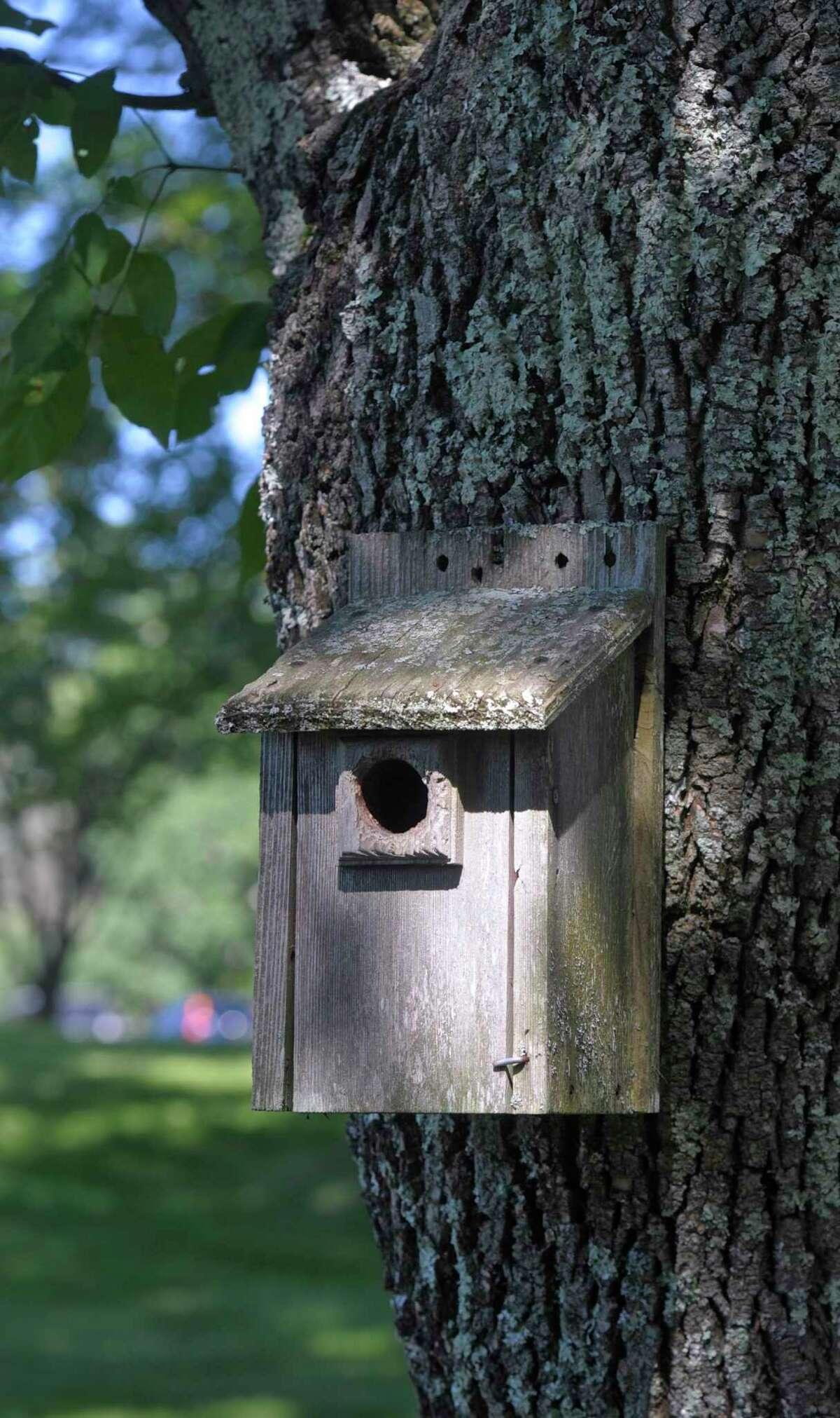 A birdhouse at the Connecticut Audubon-Deer Pond Farm in Sherman.