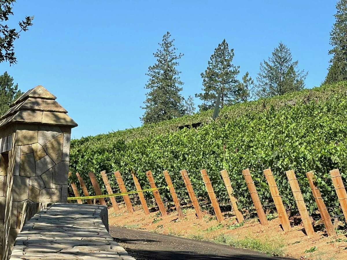 A small plane crashed into a vineyard near the Angwin Airport in Napa County Friday morning.