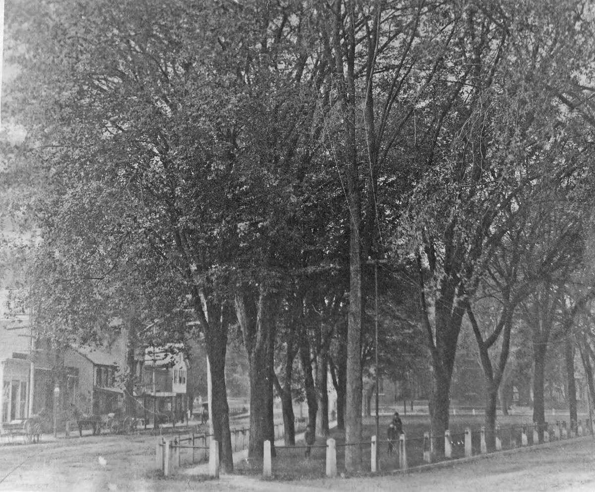 A little boy in Columbus Park, circa 1889.
