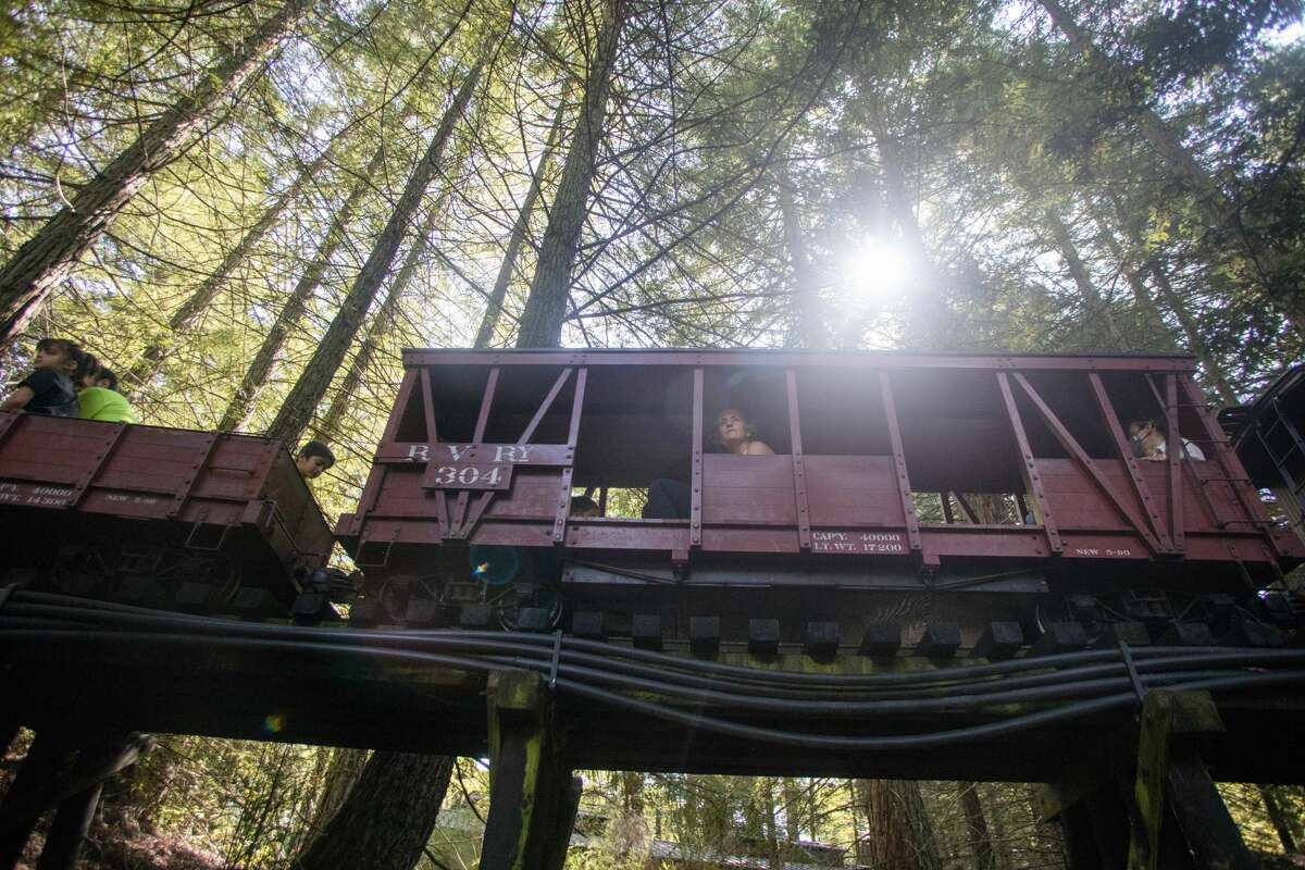 Visitors ride the scaled down Tilden Park steam train, known as the Redwood Valley Railway, across a trellis bridge through Tilden Park in the East Bay on July 18, 2021. The train runs on a 15-gauge track.