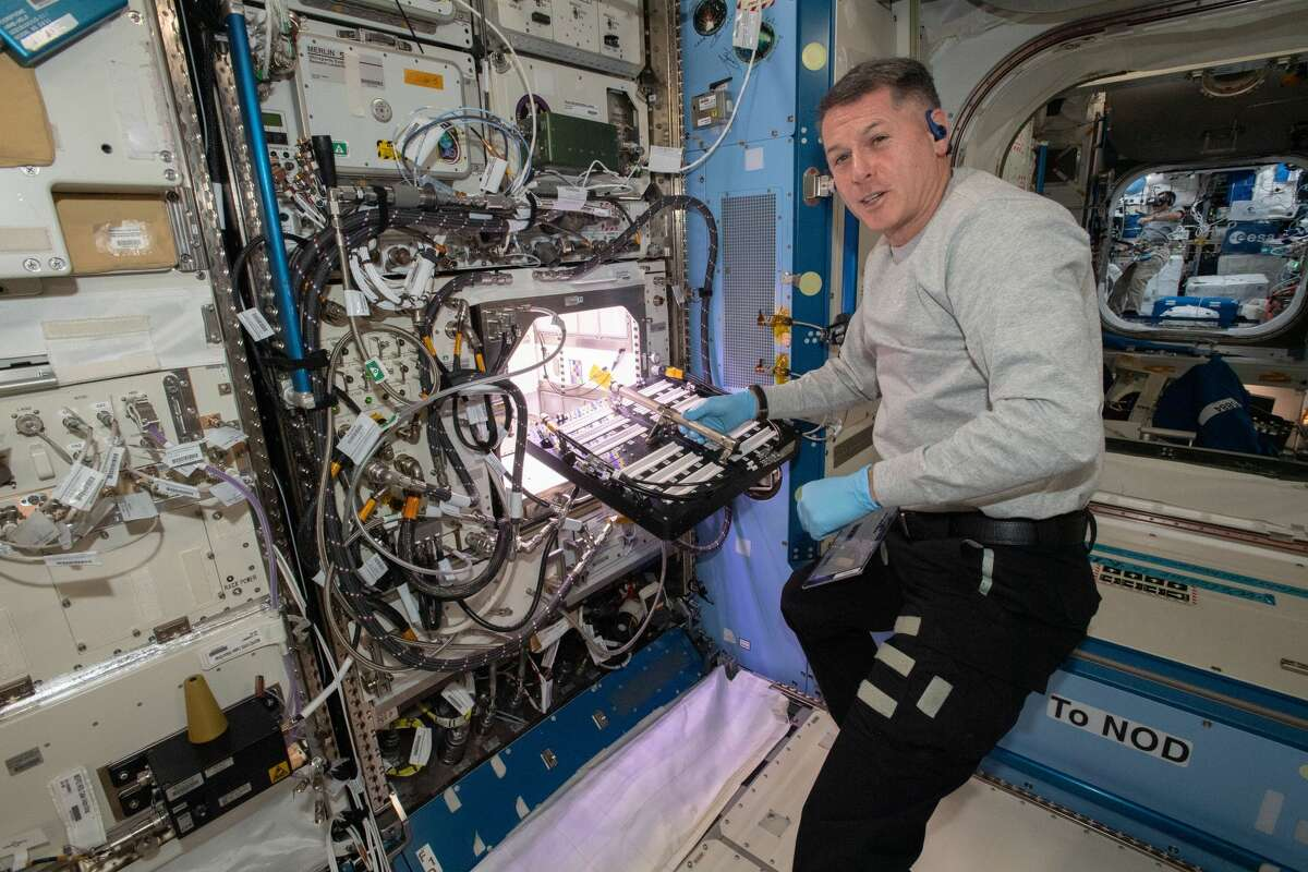 NASA astronaut and Expedition 65 Flight Engineer Shane Kimbrough inserts a device called a science carrier into the Advanced Plant Habitat (APH), which contains 48 Hatch chili pepper seeds NASA started growing on July 12, 2021 as part of the Plant Habitat-04 experiment. Astronauts on station and a team of researchers at Kennedy will work together to monitor the peppers' growth for about four months before harvesting them. This will be one of the longest and most challenging plant experiments attempted aboard the orbital lab.