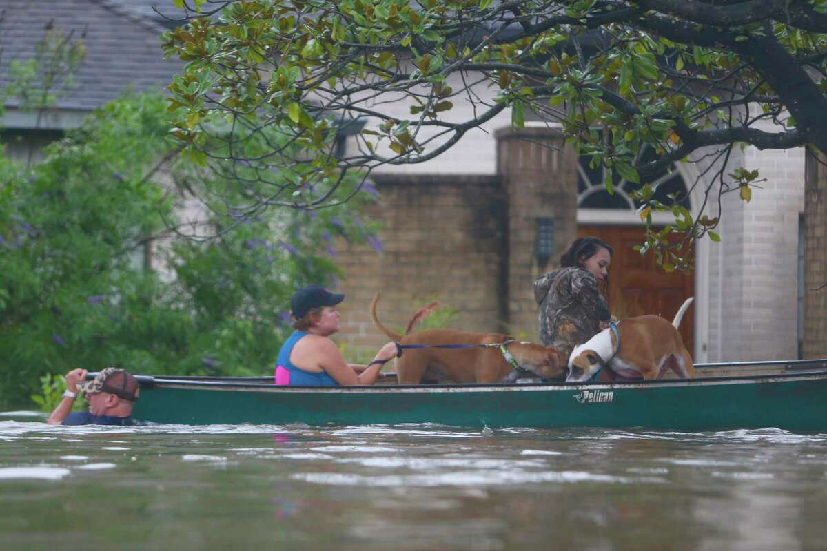 In this Aug. 27, 2017 photo, a family evacuates their Meyerland home in Houston following Hurricane Harvey.