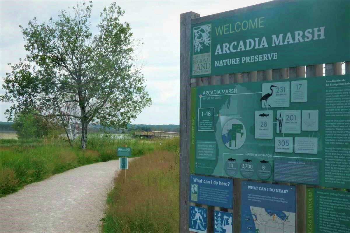 The Grand Traverse Land Conservancy has reopened parts of a boardwalk that has been closed since April. The boardwalk was opened in late 2019. (File photo)
