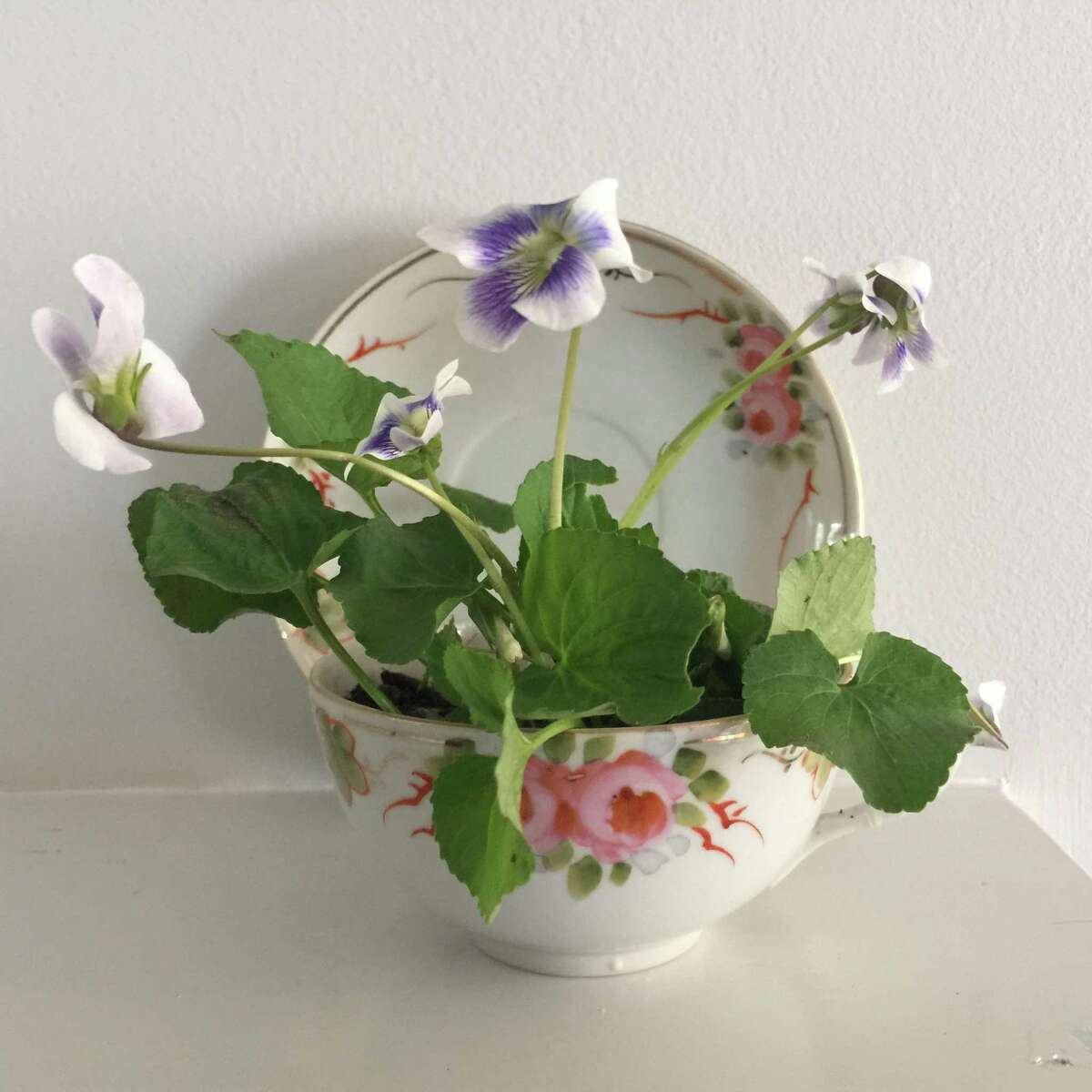 The Wilton Historical Society recently offered a May Day Vintage Tea Cup Workshop for children. The Historical Society has since received a grant from the Elizabeth Raymond Ambler Trust in order to research the history of African Americans in the town.
