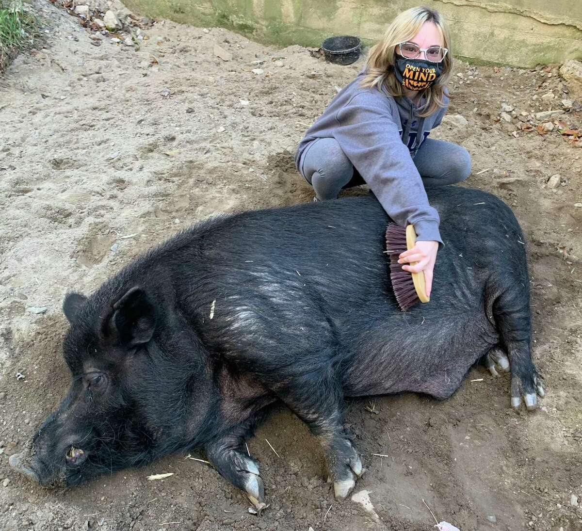"""Hamton J. Pig, Connecticut's Beardsley Zoo's 14-year-old male Guinea hog, died July 17, 2021 due to """"causes related to his advanced age,"""" according to a news release from the zoo."""