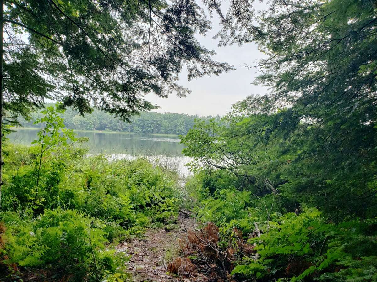 Arielle Breen went to the Kehl Lake Natural Area in Leelanau County last week and shared some photos from the journey.