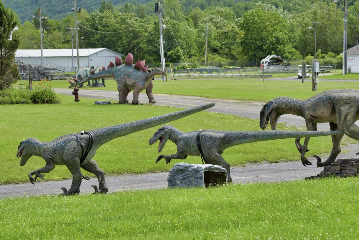 A view of some of the dinosaur models that are part of the Dinosaur Adventure Drive-Thru show at the Altamont Fairgrounds, seen here on Thursday, July 22, 2021, in Altamont, N.Y. The show, with life-sized dinosaurs, opens on Friday and runs through August 1st. (Paul Buckowski/Times Union)