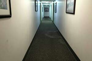 A mildewed carpet inside a hallway of the West Haven Surfside apartment complex on July 21, 2021.