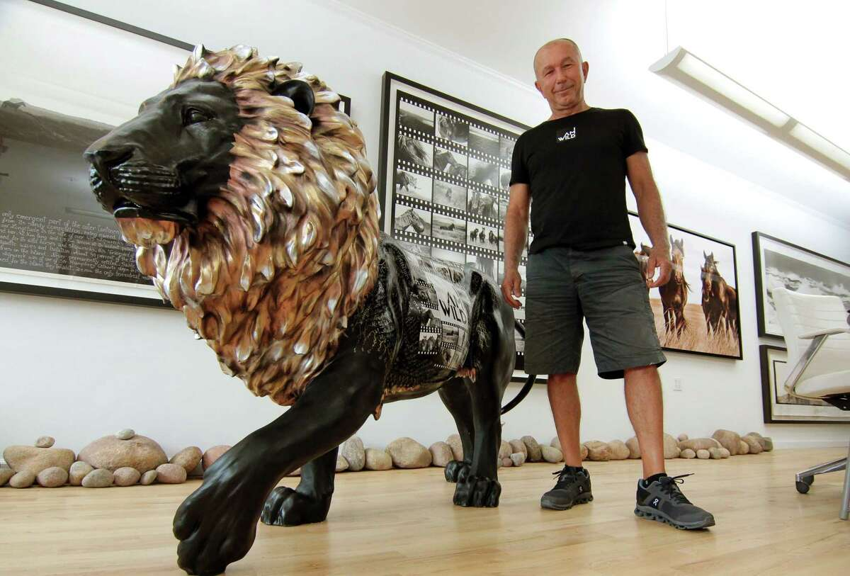 """Local artist Roberto Dutesco, who is participating in the Tusk Foundations """"Lion Trail"""" art series, poses with his lion at his studio, IAMWILD, in Old Greenwich, Conn., on Wednesday July 21, 2021. Dutesco is one of a group of artists is creating different representations of lions which will be displayed and sold and money raised will go toward conservation efforts."""