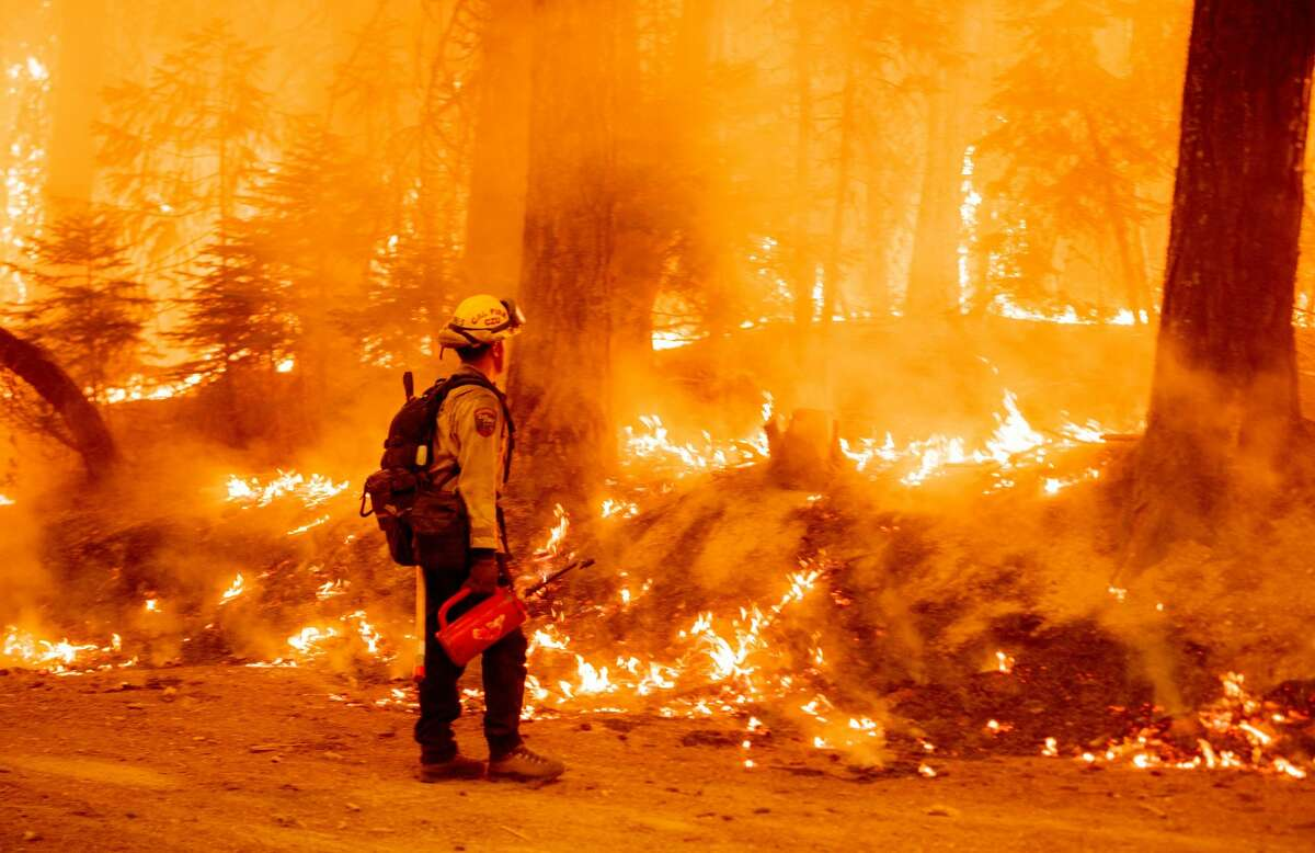 A Cal Fire firefighter uses a drip torch to light a backfire in an effort to stop the spread of the Dixie fire in the Prattville community of unincorporated Plumas County on July 23, 2021.