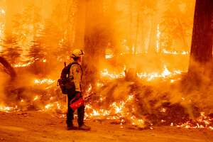 """A Cal Fire firefighter uses a drip torch to light a backfire in an effort to stop the spread of the Dixie fire in the Prattville community of unincorporated Plumas County on July 23, 2021. - The Dixie fire, which started only a few miles from the origin of the deadly Camp fire, has churned through more 150,000 acres and continues to burn towards rural communities. Several villages were evacuated in the face of the advancing """"Dixie Fire"""", which is suspected to have been caused by a tree falling on power cables. (Photo by JOSH EDELSON / AFP) (Photo by JOSH EDELSON/AFP via Getty Images)"""